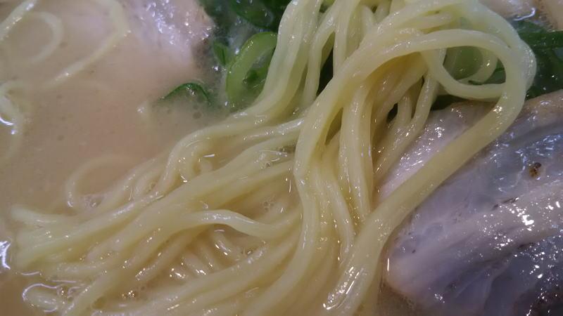 鴨町ラーメン  / 京都グルメガイド